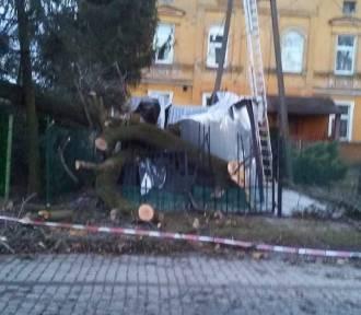 AKTUALIZACJA. Huragan Ciara na Dolnym Śląsku. Zerwane dachy, opóźnione pociągi [FILMY, ZDJĘCIA]
