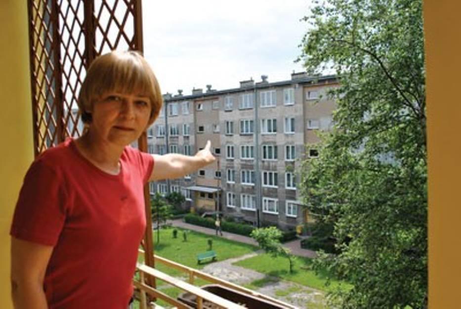 Jerzyki mają siedliska w tych blokach - mówi Aleksandra Trzaska