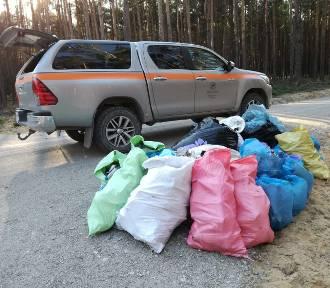 Wyzwanie na FB: zabierz śmieci z lasu. Jak zgłosić dzikie wysypisko? Lasy Państwowe walczą z patologią