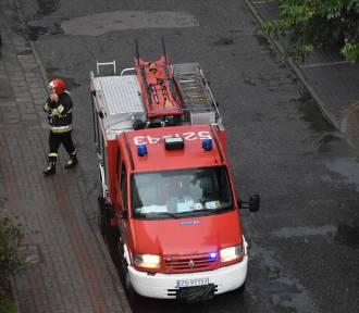 W powiecie sławieńskim szalała wichura. Bilans nocnych działań strażaków ZDJĘCIA