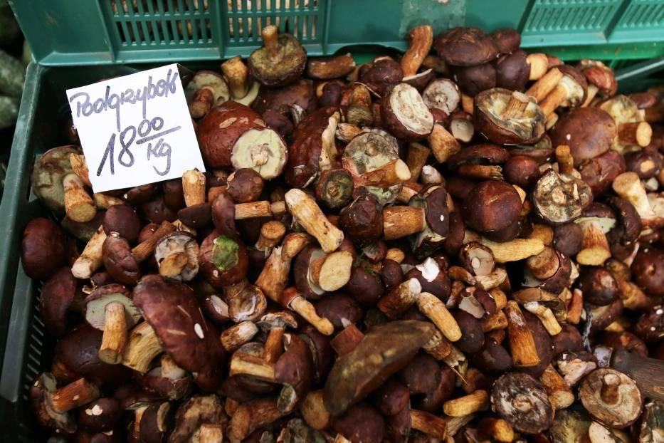 Na targowisku na placu Miarki w Katowicach grzybów nie brakuje Zobacz kolejne zdjęcia/plansze