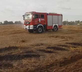 Osiem zastępów Straży Pożarnej gasiło pożar zboża na pniu w Nowych Miniętach