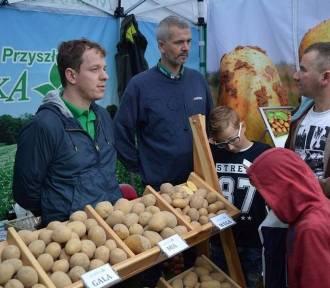 Jesień w polu i ogrodzie – Kościerzyński Dzień Ziemniak: Wystawa już w niedzielę