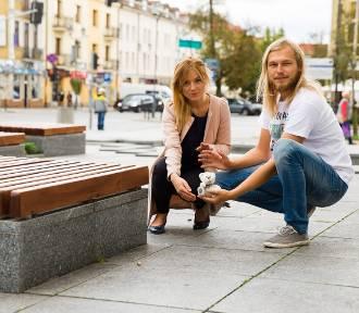 Białystok opanują niedźwiadki, czyli czas na Widzimisie