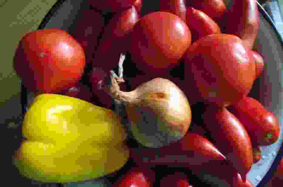 Pomidory, papryka, cebulka