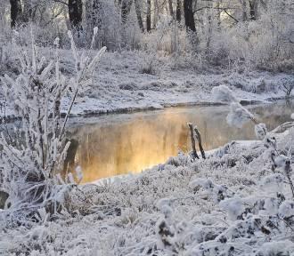 Pogoda w woj. lubelskim. Wtorek z przelotnymi opadami śniegu (WIDEO)