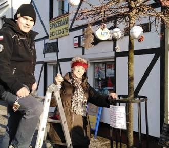 Seniorzy z klubu Jantar po raz kolejny udekorowali świąteczne drzewka