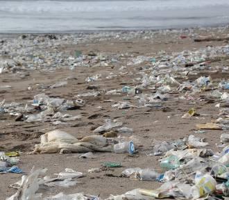 To koniec jednorazowych naczyń. Plastikowe słomki, talerze i sztućce będą zakazane! [przegląd]