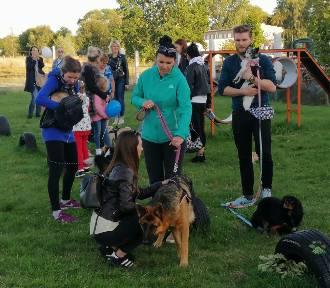 Kudłaty Piknik na wybiegu dla psów w Podczelu - zbierali na trzecią lampę