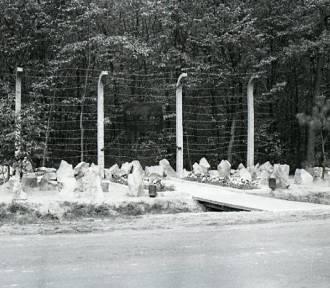 """Wkrótce rozpoczną się badania archeologiczne terenu byłego obozu koncentracyjnego """"Budzyń"""""""