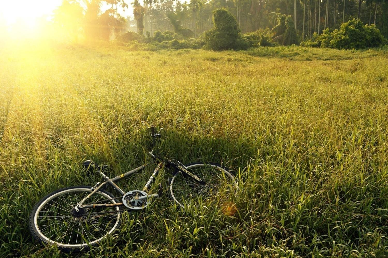 W województwie podlaskim nie brakuje atrakcji dla osób, które chciałyby wybrać się na rowerowe zwiedzanie