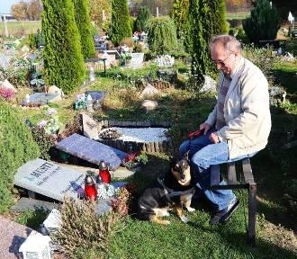 Cmentarz dla zwierząt przy ul. Malowniczej w Łodzi [ZDJĘCIA]