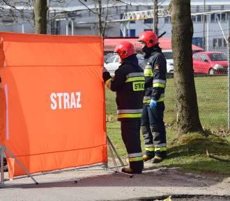 Tragiczny wypadek w Ciechocinku - kierowca z pizzerii potrącił kobietę