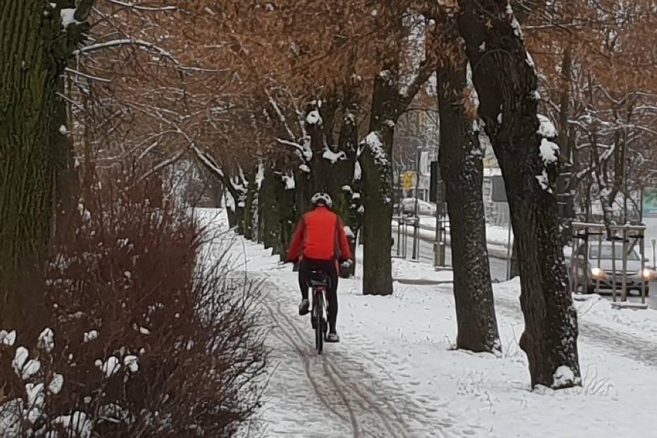 Władze Łodzi zapowiedziały przed nadejściem zimy, że na ich zlecenie firmy odśnieżające miasto będą zajmowały się także drogami rowerowymi