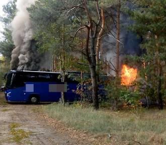 Pożar autokaru! Pojazd wiózł dzieci, doszczętnie spłonął [ZDJĘCIA]