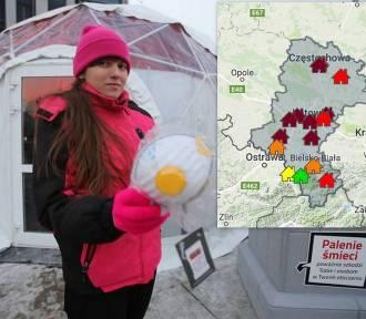 Śląskie: Alarm smogowy! Katowice, Tychy, Gliwice mają fatalne powietrze [MONITORNG 11 stycznia]