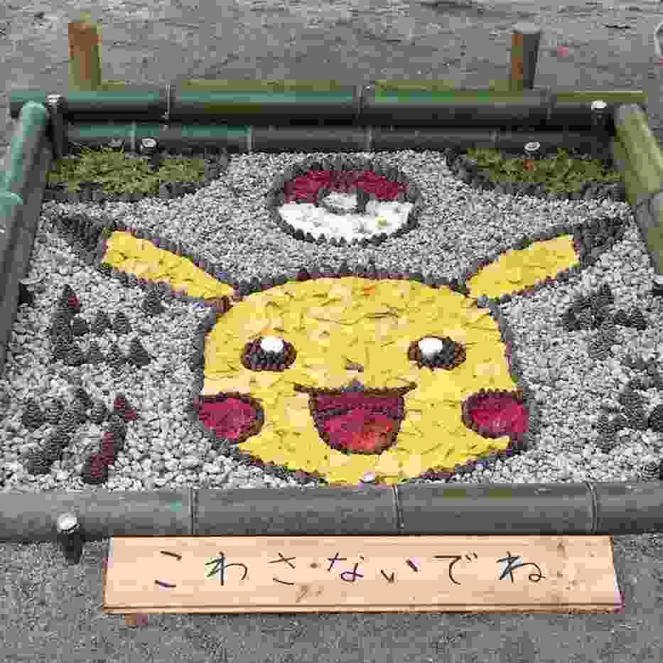 Japończycy zrobią sztukę ze wszystkiego, nawet ze spadających liści [ZDJĘCIA]