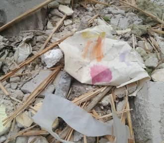 Śmieci w leśnej drodze. Obrońcy przyrody zawiadomili policję [ZDJĘCIA]