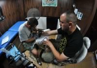 Element Tattoo Cennik Naszemiastopl