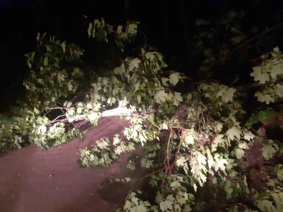 Strażacy ochotnicy zabezpieczali miejsca zdarzenia, cięli drzewa przy pomocy piły mechanicznej, a następnie przesuwali je na pobocze