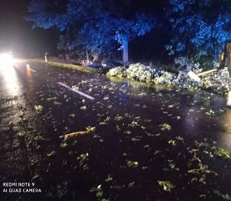 Nocna burza w pow. wieluńskim i okolicy. Powalone drzewa, zerwane linie energetyczne