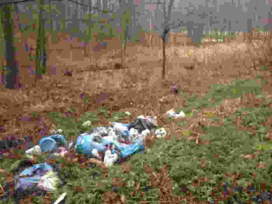 Worki ze śmieciami na polanach