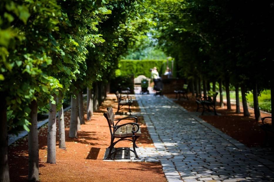 Ogrody Kapiasów w Goczałkowicach Zdroju w lipcu najpiękniejsze są w ogrodzie romantycznym i zaułku śródziemnomorskim