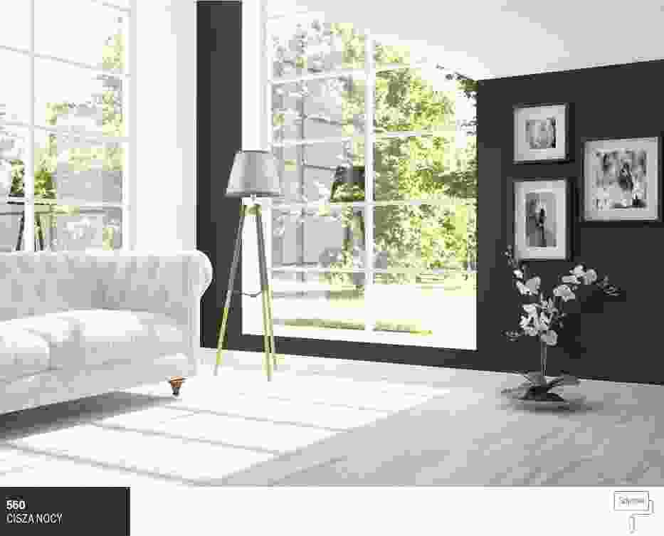 Nowoczesny salon w czerni