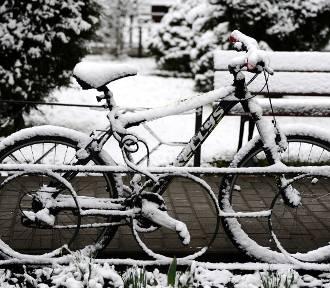 Jasło zasypane śniegiem. W poniedziałek wiosennie, we wtorek zimowo [ZDJĘCIA]
