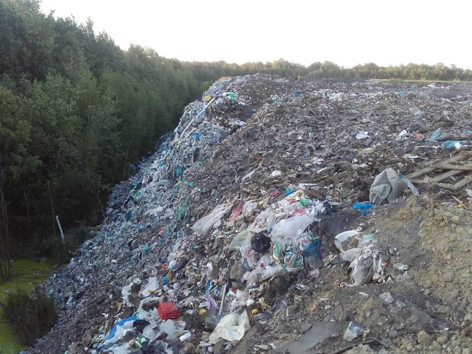 Nielegalne wysypisko śmieci na terenie kopalni Miechowice w Bytomiu