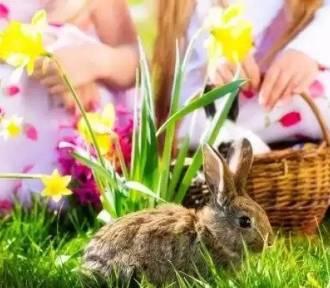 Krosno Odrzańskie/Gubin. Jaka będzie pogoda na Wielkanoc?