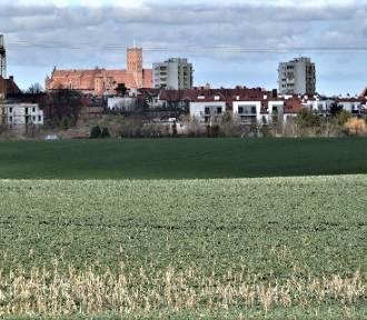 Na horyzoncie widać mieszkania na wynajem, które mają powstać z rządowego programu