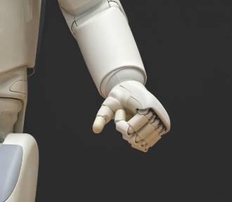 Myślisz, że roboty zabiorą ci pracę? Tego o nich nie wiesz
