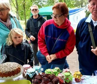Wielkie targi rolnicze i kiermasz ogrodniczy niedaleko Gorzowa. Niczego nie brakowało