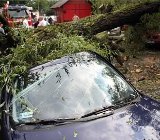 Wiatr łamał drzewa i linie energetyczne. Strażacy interweniowali setki razy