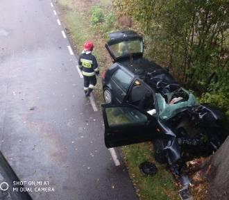 Lisewo Malborskie-Stara Wisła. Śmiertelny wypadek na drodze powiatowej