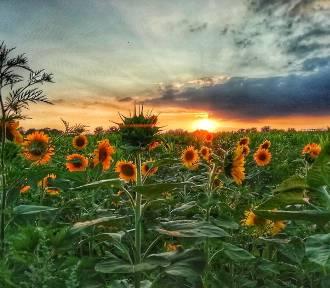 Zachody słońca w obiektywie naszych Czytelników! [ZDJECIA]
