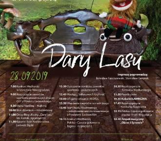 Festiwal Dary Lasu już w sobotę w Lwówku Śląskim. Zobacz zapowiedź! [FILM]