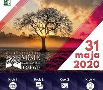 """Ogólnopolski Konkurs Fotograficzny """"MOJE ROZTOCZAŃSKIE DRZEWO"""""""