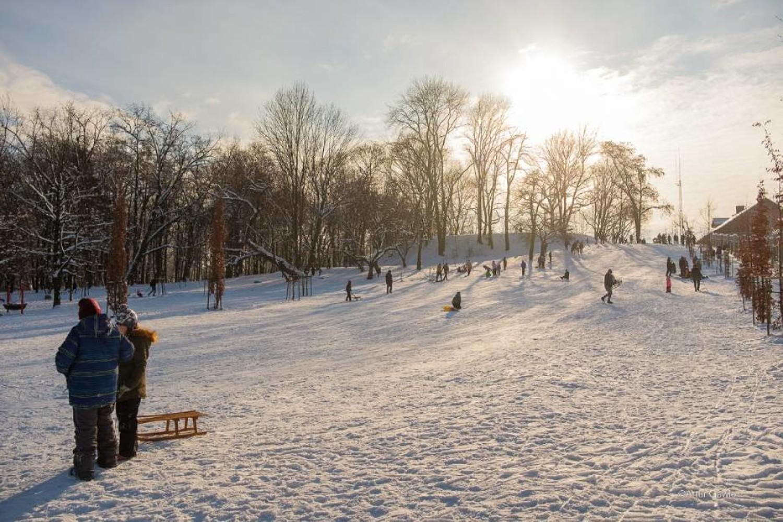 Park Strzelecki, górka obok placu zabaw