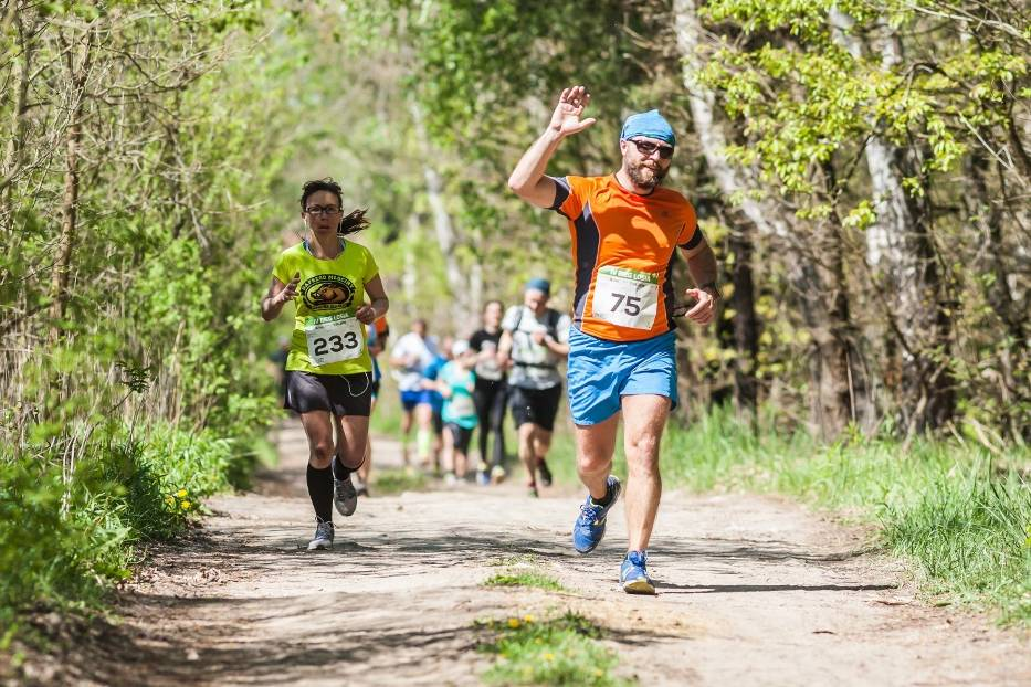 13.05 / Ultramaraton Kampinoski (ok. 50 km) i Bieg Łosia (ok. 17 km)