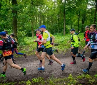 Trzy dystanse dla zaprawionych biegaczy w TriCity Trail