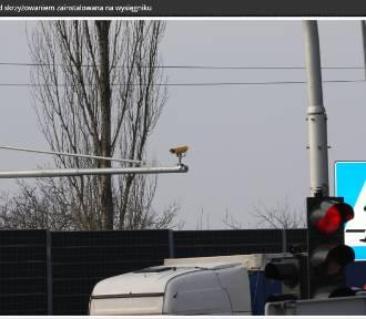 W Piotrkowie będzie system monitoringu wjazdu samochodów na czerwonym świetle