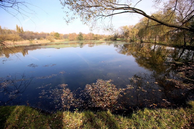 Jesień w Dolinie trzech Stawów w Katowicach