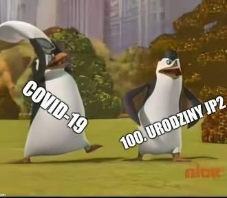 Internauci kontra kremówki. TOP 12 najnowszych memów o Wadowicach