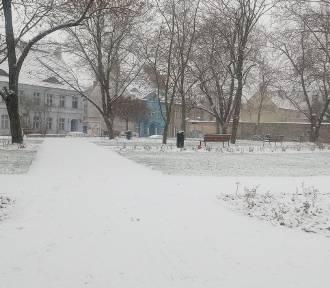 Zima w Międzyrzeczu: w końcu spadł śnieg. Niewiele, ale i tak zrobiło się biało