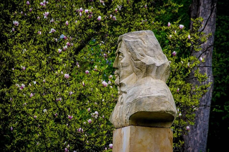 Szczawno-Zdrój: Kwitną magnolie i rododendrony