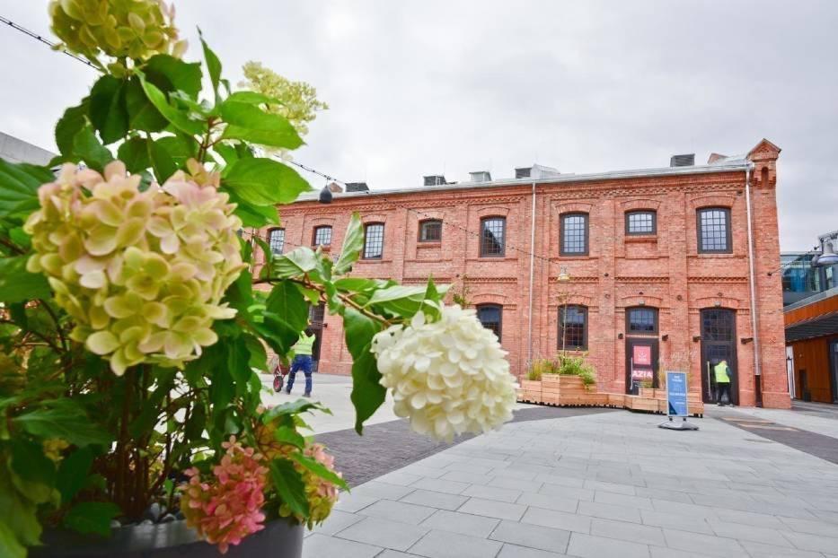PIĄTEK: Recital Chopinowski na placu Konesera
