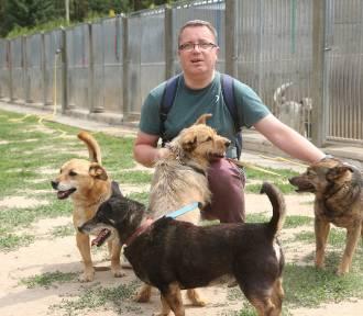 Kolejny Bieg na 6 łap w schronisku dla psów w Złotowie [ZDJĘCIA]
