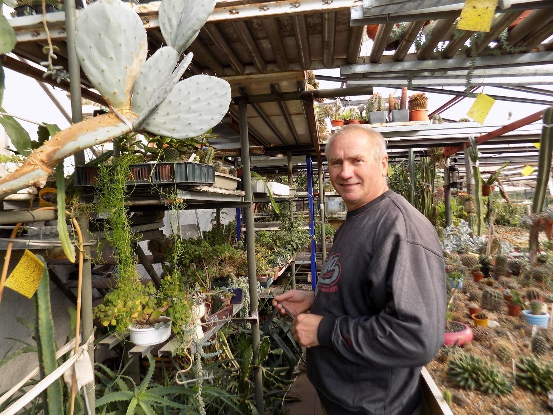 Kaktusiarnia w Żaganiu